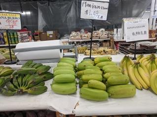 Dragon Star, More bananas, plantains