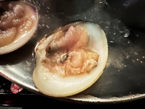 Meritage, Littleneck clam